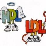 Waspada LDL