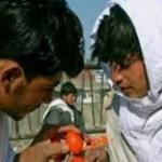 Adu telur Afganistan