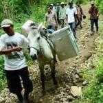 Indonesia-kuda-pemilu_medium