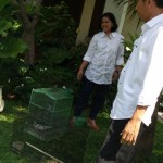 2-rumah-Jokowi Solo