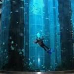 Aquarium silinder terbesar di dunia