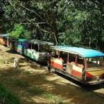 Desa Lebong Tandai