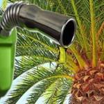 bioethanol-Bengkalis juara