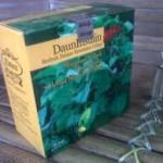 3-obat herbal daun insulin
