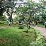 Olah raga jalan di taman