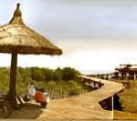 Wisata mangrove Probolinggo-1