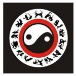 yin dan yang