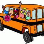 naik bis
