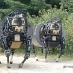 Robot sapi damico