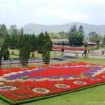 taman bunga nusantara-d