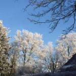 Akibat global warming-Foto dari rumah Poppy Dunda-4