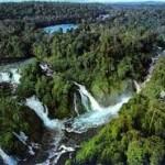 3-Hutan Amazon Sumber 80% makanan di dunia