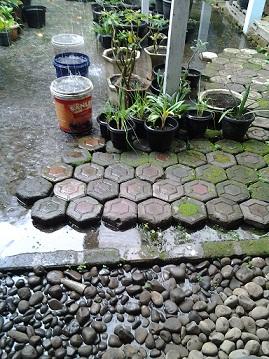 Ember penampung Hujan