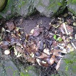 Lubang dan sampah di tanah penampung air