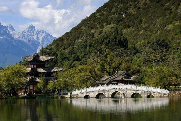 Hutan Baru di China