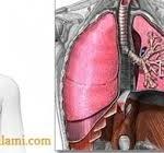 Fibrosis Paru