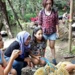 Liking Durian Garden