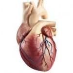 Pasang Ring di Jantung hanya butuh 30 Menit