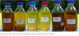 Warna Urine