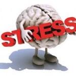 Stres merusak Otak