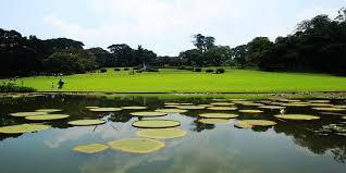 Kebun Raya Bogor kembali buka Taman Akuatik
