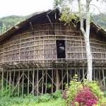 rumah kaki seribu suku arfak