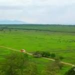Africa Van Java sedang Hijau