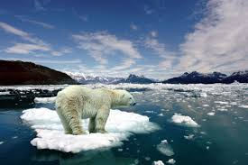 Es Mencair Penyebab Virus Di Kutub Utara