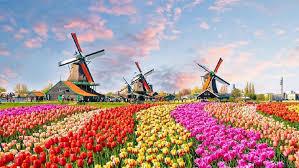Belanda Bukan Holland