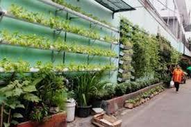 Desa Glintung Go Green Berprestasi Karena Gerakan Menabung Air