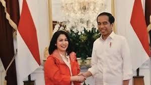 Profil Dini Shanti Ahli Hukum Jadi Stafsus Jokowi
