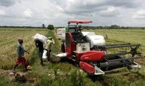 Bangga Jadi Petani Pemuda Diajak Tekuni Pertanian