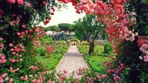 bunga indah di roma