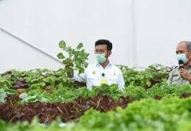 Alat Dan Mesin Pertanian Disiapkan Genjot Produktivitas