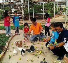 Alam Indah Wisata Taman Burung Di Bandung