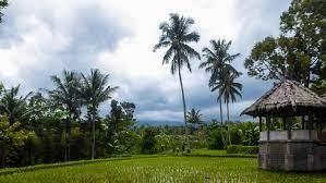 Desa Wisata Tetebatu Lombok Timur Mewakili Indonesia Di Kompetisi Desa Dunia