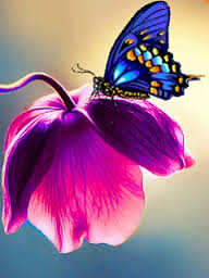 bunga indah
